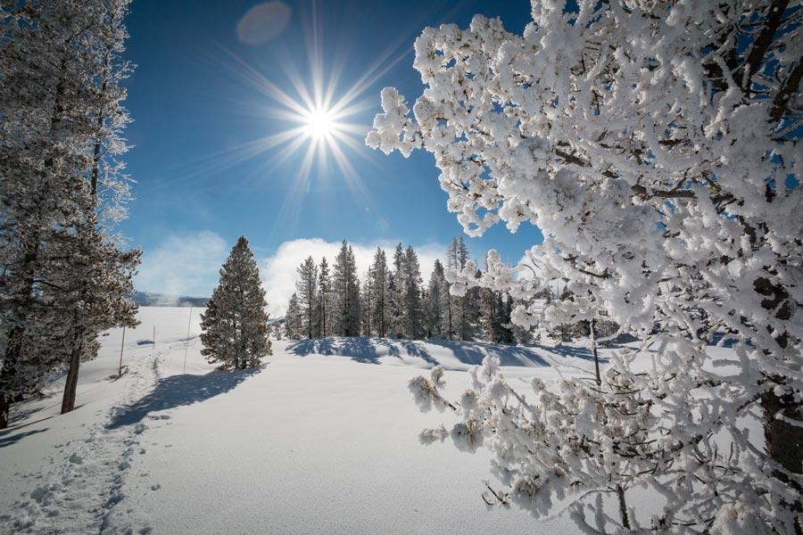 Yellowstone no inverno, onde é possível fazer um passeio de snowmobile