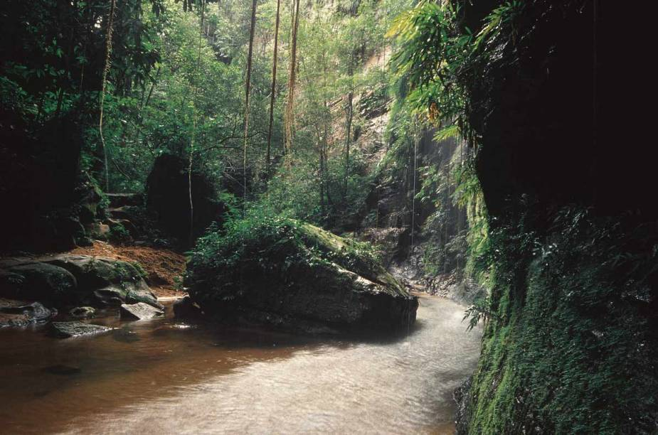 Trilha da Gruta da Pedra Caída, que leva à cachoeira de mesmo nome, na Chapada das Mesas