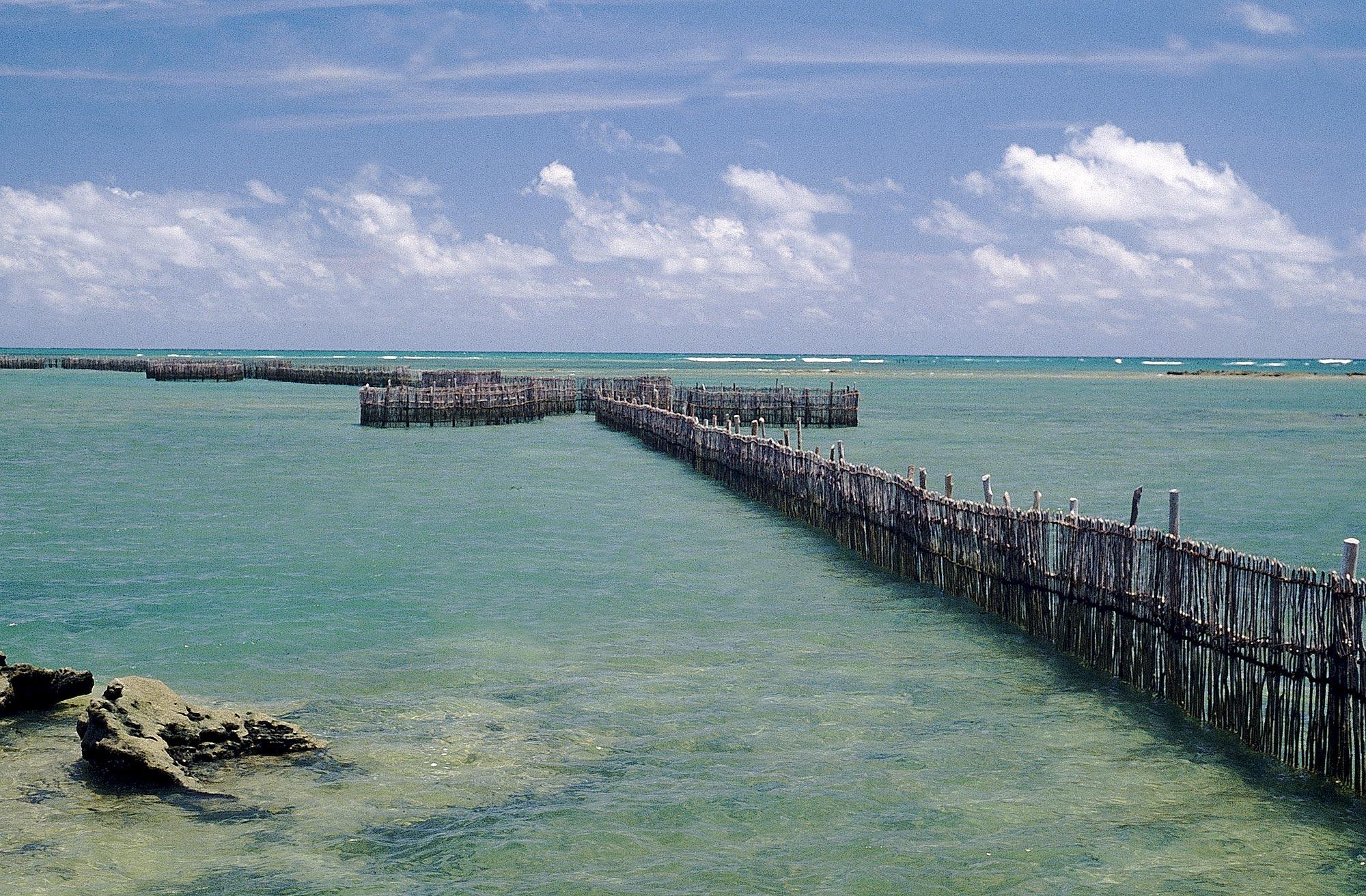 Praia do Morro, Alagoas