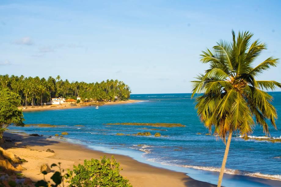 A Praia de Japaratinga, localizada em Maragogi, é repleta de coqueiros, larga faixa de areia, mar verde e recifes, além de ter a sua piscina natural, conhecida como Picão.