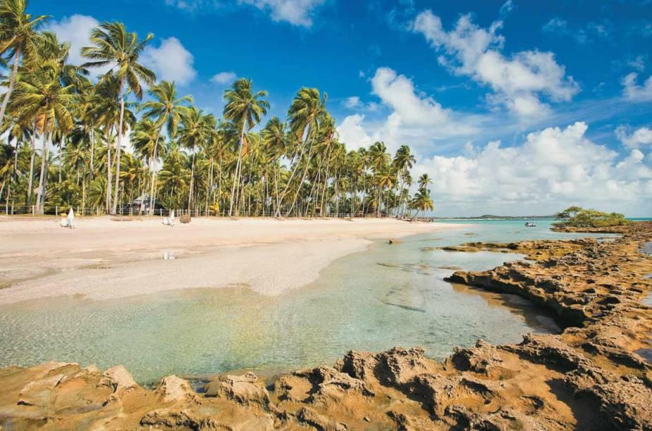 """<a href=""""http://viajeaqui.abril.com.br/estabelecimentos/br-pe-tamandare-atracao-dos-carneiros"""" rel=""""Praia dos Carneiros - Tamandaré"""" target=""""_blank""""><strong>Praia dos Carneiros - Tamandaré</strong></a>Digna de um cartão-postal:coqueirais fazendo sombra sobre a areia clara, mar verde-transparente e piscinas naturais repletas de peixes coloridos. Uma igrejinha do século 18 dá um charme extra ao cenário."""