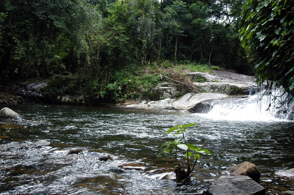 Cachoeira Poço do Tarzan, em Paraty