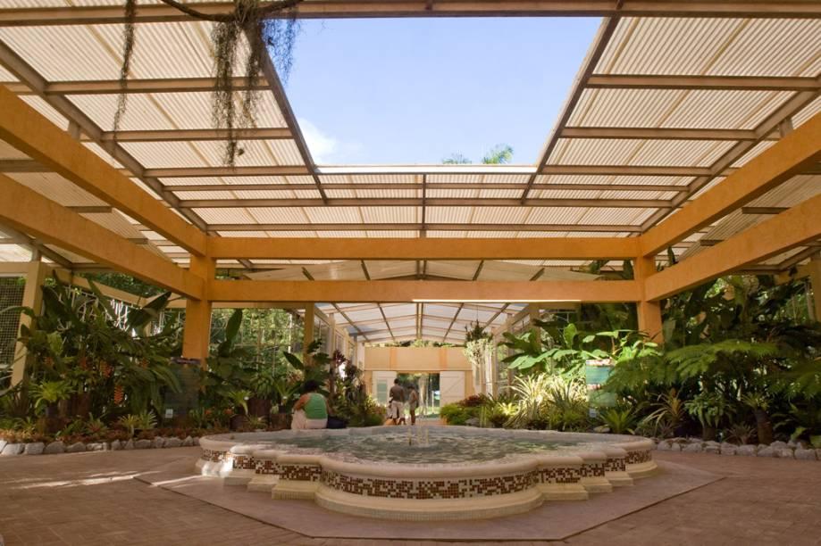 Criado por Dom João VI, o Jardim Botânico mantém a exuberância apesar de seus 202 anos de existência
