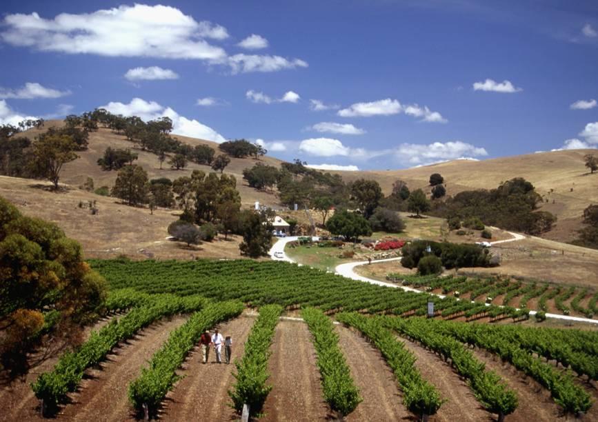 O Vale Barossa, localizado a 86 quilômetros de Adelaide, é a mais famosa região produtora de vinho do estado de South Australia, com mais de 50 vinícolas e adegas