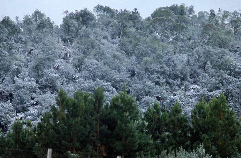 Neve em <strong>São Joaquim</strong>, Santa Catarina