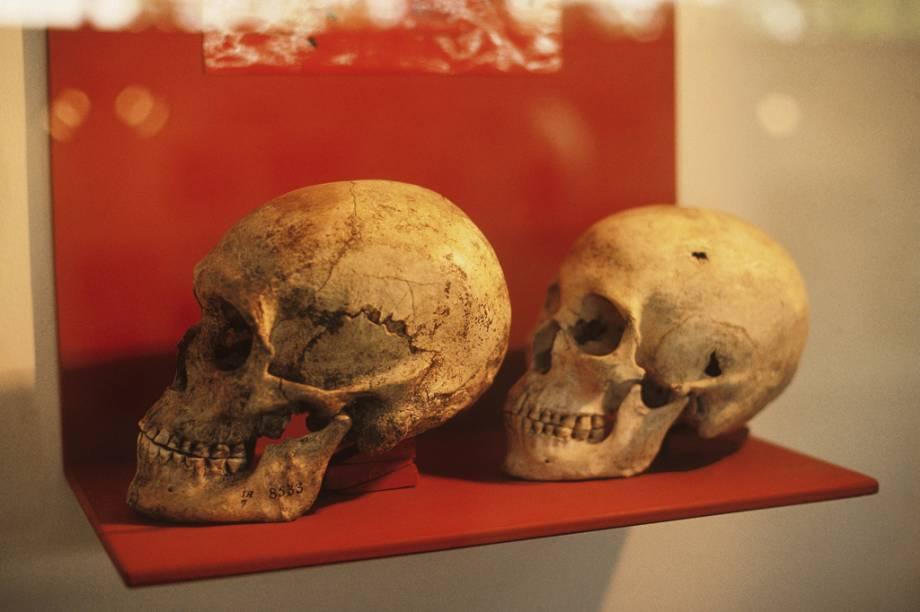 As peças do Museu Arqueológico de Sambaqui mostram o modo de vida dos grupos que habitaram o litoral brasileiro há mais de 2 mil anos