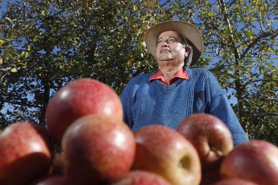 Da fruta mais produzida na região são preparados licores, geleias e chás
