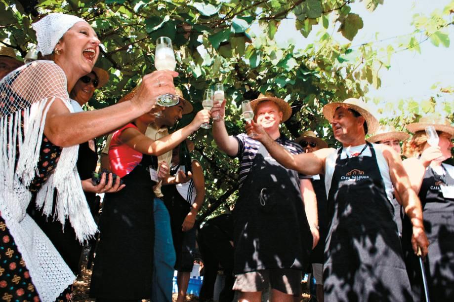 Turistas brindando com espumante na Festa da Vindima, atração da vinícola Casa Valduga, no Vale dos Vinhedos