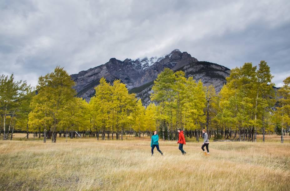 <strong>Montanha Cascade</strong>        Essa majestosa montanha está bem próxima a Banff. Há duas trilhas que levam até mais perto de sua base, a C-Level Cirque e a Stoney Squaw, ambas de nível moderado de dificuldade
