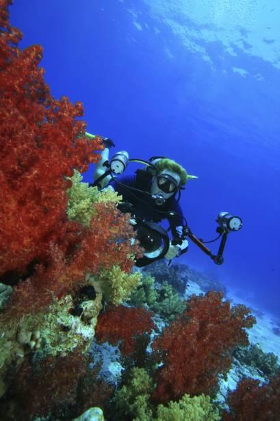 O Mar Vermelho, no Egito, é considerado um dos melhores pontos de mergulho do planeta, mas sofre com acelerado processo de degradação