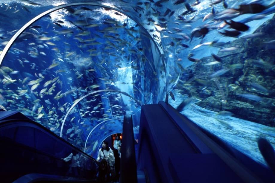 O complexo Hakkejima é um parque temático voltado à relação do Japão com o mar, incluindo aquários, shows e piscinas