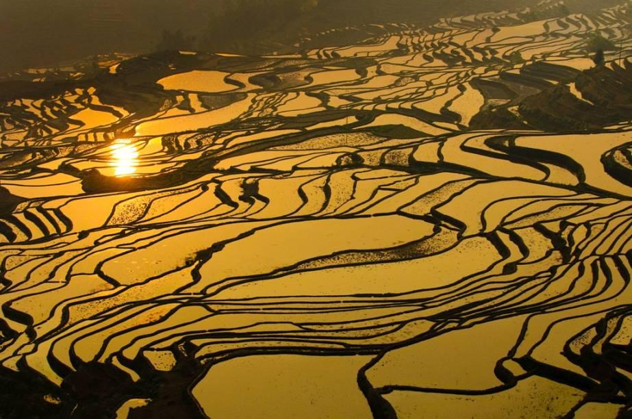 O arroz é uma das culturas agrícolas mais fundamentais da Ásia oriental. Não só uma fonte essencial de carboidratos, tornou-se também uma forma de pagamento. Os terraços alagados, próximos a Longsheng, são tanto um grande feito humano como uma visão espetacular