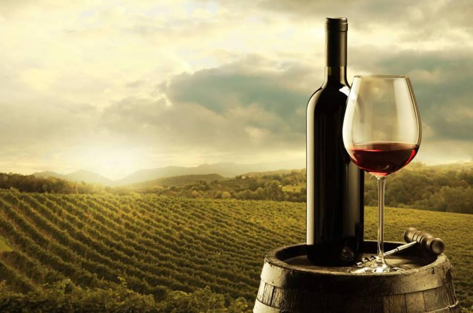 Milhões de pessoas em todo mundo são adoradoras de um bom vinho. E sabemos que produzi-los é uma verdadeira arte, por isso, escolhemos as melhores opções para conhecer ótimas vinícolas ao redor do planeta
