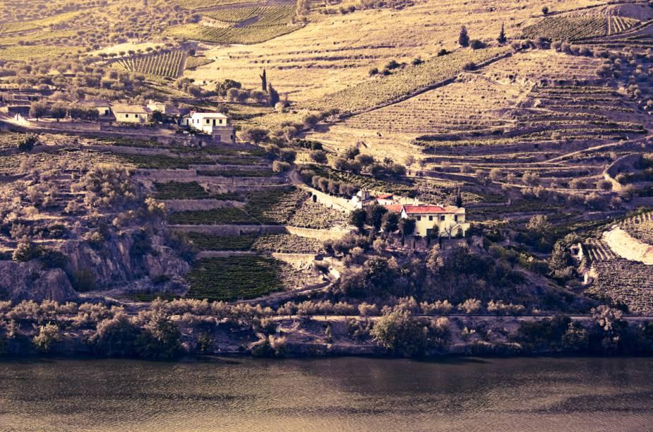 Vínicola na margem do Douro