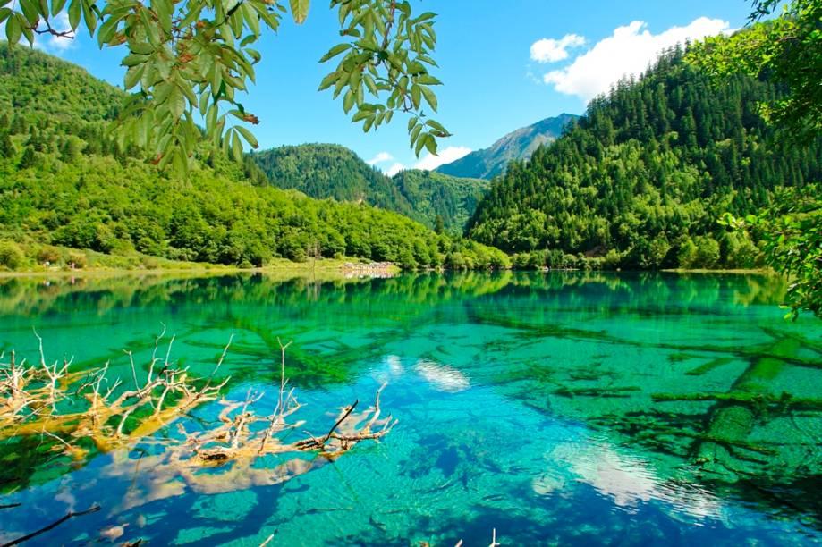O belíssimo vale de Jiuzhaigou, na província de Sichuan, é um elaborado conjunto de lagos, cachoeiras, rios e montanhas descrevendo uma incrível alegoria de cores. Reserva da biosfera e patrimônio da humanidade, seu refinado ecossistema e incríveis paisagens já foram cenário de diversos filmes
