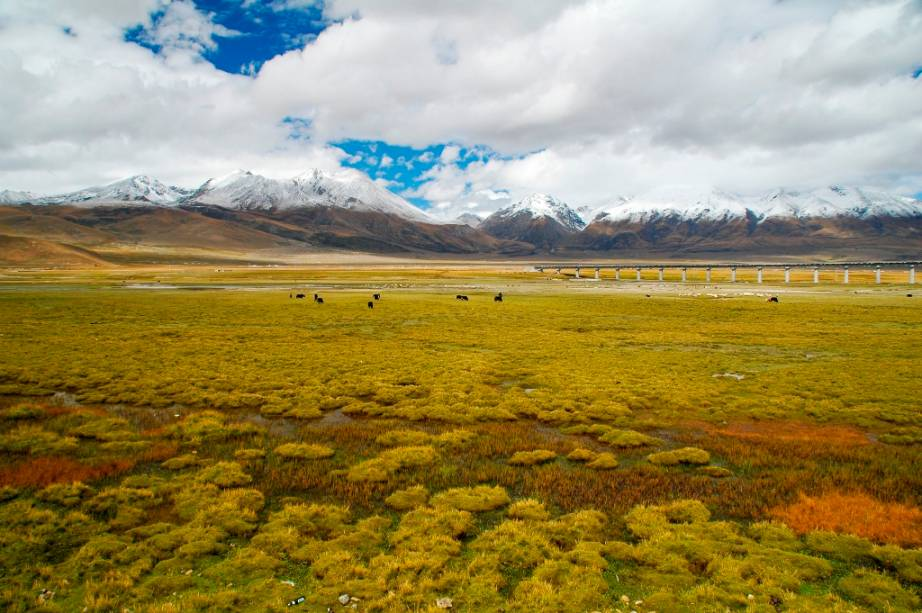 O lago Namtso, no Tibete, é considerado um dos mais belos da região. Ao seu redor pastores nômades vivem em extensas pradarias protegida pelos contrafortes de alta-montanha