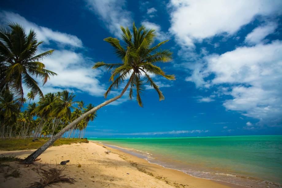 """No período de maré baixa na <strong>Praia do Patacho</strong>, em <strong>São Miguel dos Milagres</strong>,<strong> Alagoas</strong>, é possível caminhar """"quilômetros"""" mar adentro e aproveitar as piscinas naturais que se formam nesta fase. <a href=""""https://www.booking.com/searchresults.pt-br.html?aid=332455&lang=pt-br&sid=eedbe6de09e709d664615ac6f1b39a5d&sb=1&src=index&src_elem=sb&error_url=https%3A%2F%2Fwww.booking.com%2Findex.pt-br.html%3Faid%3D332455%3Bsid%3Deedbe6de09e709d664615ac6f1b39a5d%3Bsb_price_type%3Dtotal%26%3B&ss=S%C3%A3o+Miguel+dos+Milagres%2C+Alagoas%2C+Brasil&checkin_monthday=&checkin_month=&checkin_year=&checkout_monthday=&checkout_month=&checkout_year=&no_rooms=1&group_adults=2&group_children=0&from_sf=1&ss_raw=S%C3%A3o+Miguel+dos+Milagres+&ac_position=0&ac_langcode=xb&dest_id=-671781&dest_type=city&search_pageview_id=8a2586ccbffc0050&search_selected=true&search_pageview_id=8a2586ccbffc0050&ac_suggestion_list_length=5&ac_suggestion_theme_list_length=0"""" target=""""_blank"""" rel=""""noopener""""><em>Busque hospedagens em São Miguel dos Milagres.</em></a>"""