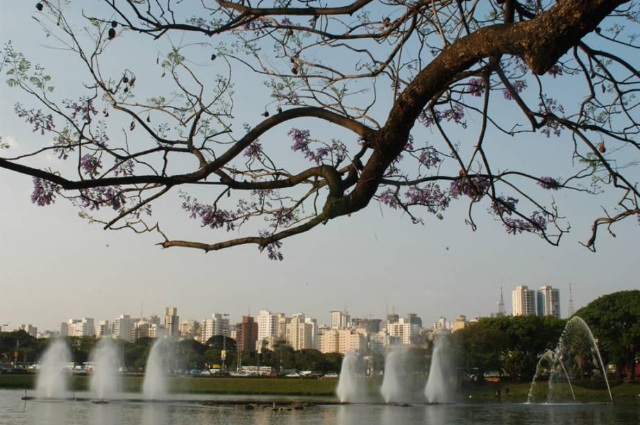 Projetado por Oscar Niemeyer, o Parque do Ibirapuera é bom para quem quer se exercitar, relaxar ou curtir um programa cultural