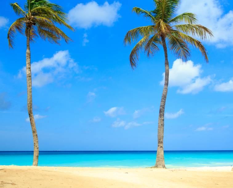 "Coqueiros enfeitam o mar verde e azul de <a href=""http://viajeaqui.abril.com.br/cidades/aruba-oranjestad"" rel=""Aruba"" target=""_blank""><strong>Aruba</strong></a>"