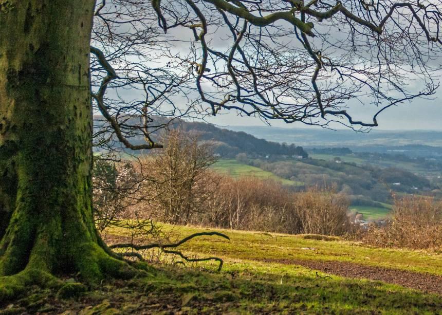 Cerca de 80% do território de Cotswolds é agrícola - o que dá ao lugar paisagens bucólicas de tirar o fôlego