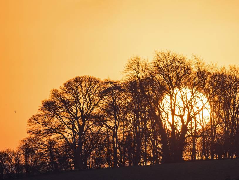 O amanhecer e o entardecer são os melhores horários para se estar em Costwolds: a paisagem fica ainda mais bonita