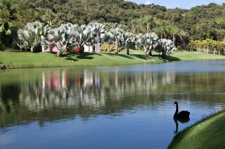 Dono do Instituto Inhotim, o minerador e mecenas Bernardo Paz dedicou 90 milhões de dólares à arte e criou um jardim dos sonhos para recebê-la