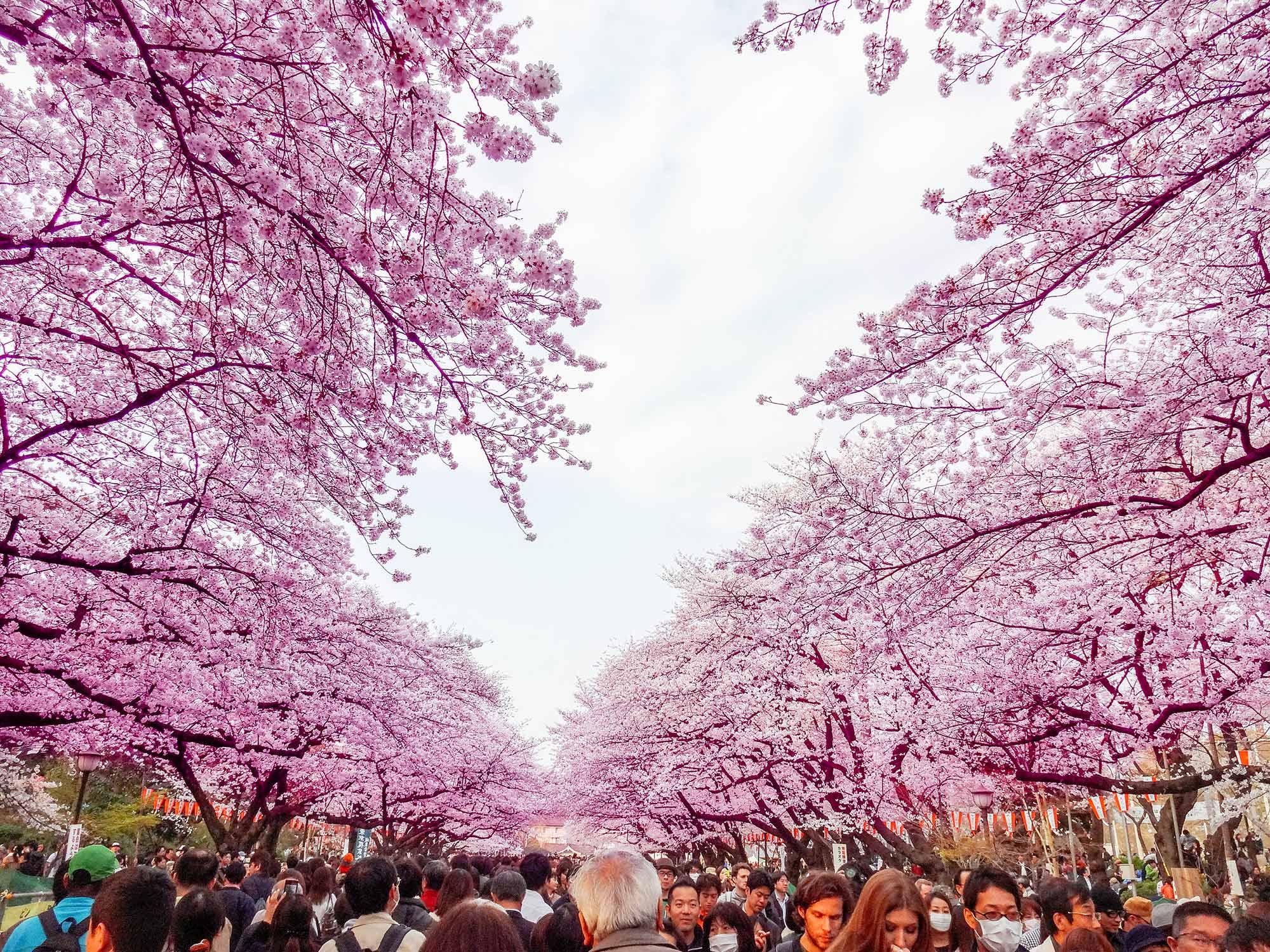Parque Ueno - Tóquio, Japão