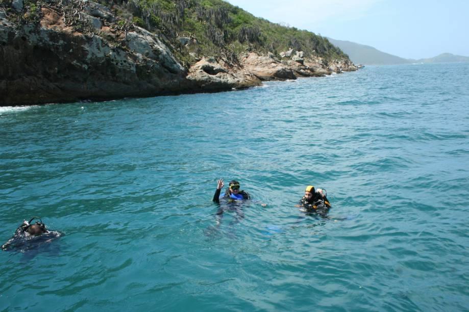 Por causa do fenômeno da ressurgência, a fauna marinha em Arraial é das mais ricas, o que faz da cidade um paraíso para o mergulho
