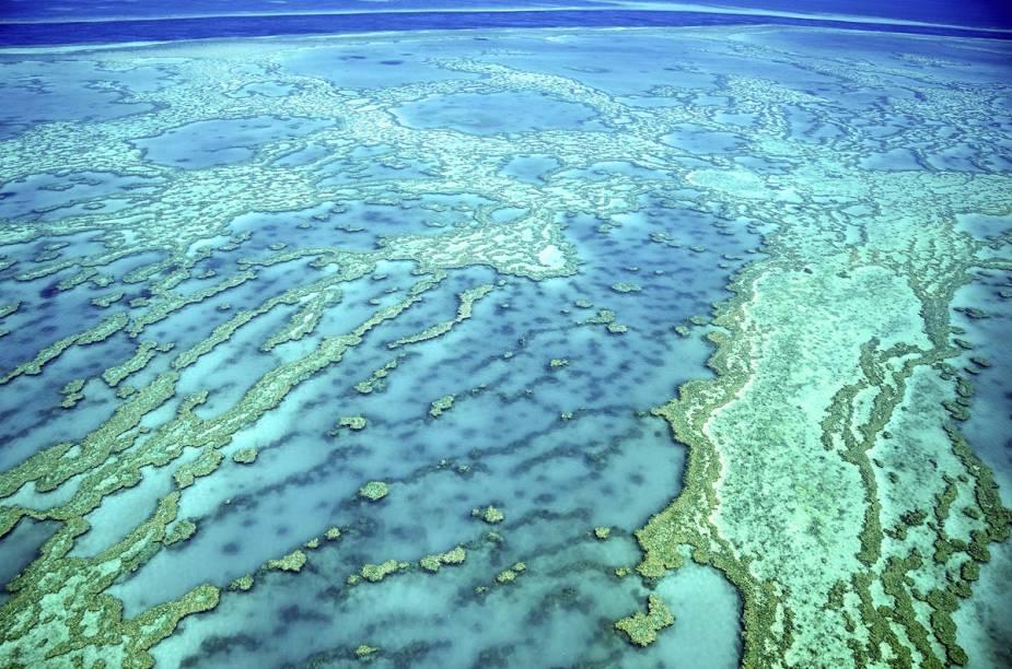 """<a href=""""http://viajeaqui.abril.com.br/estabelecimentos/australia-cairns-atracao-grande-barreira-de-coral"""" rel=""""Grande Barreira de Corais (Austrália)"""" target=""""_blank""""><strong>Grande Barreira de Corais (Austrália)</strong></a>                                        Cenário da famosa animação """"Procurando Nemo"""", a Grande Barreira de Corais é um complexo de 2.900 recifes e cerca de 900 ilhas que se estende por uma distância de 2.300 km ao longo do litoral noroeste da Austrália. No local, após colocar roupas de mergulho e saltar no mar, turistas se deleitam com mais de 400 tipos de corais (muitos deles extremamente coloridos), 30 mamíferos marinhos, seis espécies de tartarugas-marinhas e 1.400 espécies de peixe (como o peixe-palhaço, que inspirou o personagem principal de """"Nemo"""")."""