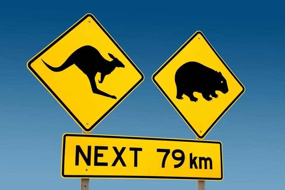 Placa avisando a presença de animais em estrada da Austrália