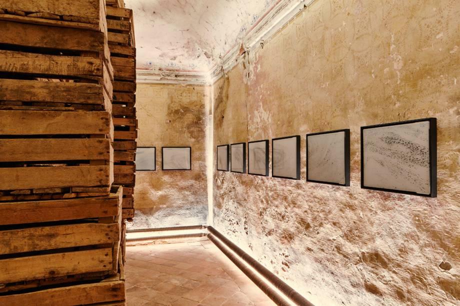 O museu expõe diversas fotografias, pinturas e ilustrações sobre a naturaleza, a antropologia, e ecologia a arte relacionadas ao cocô