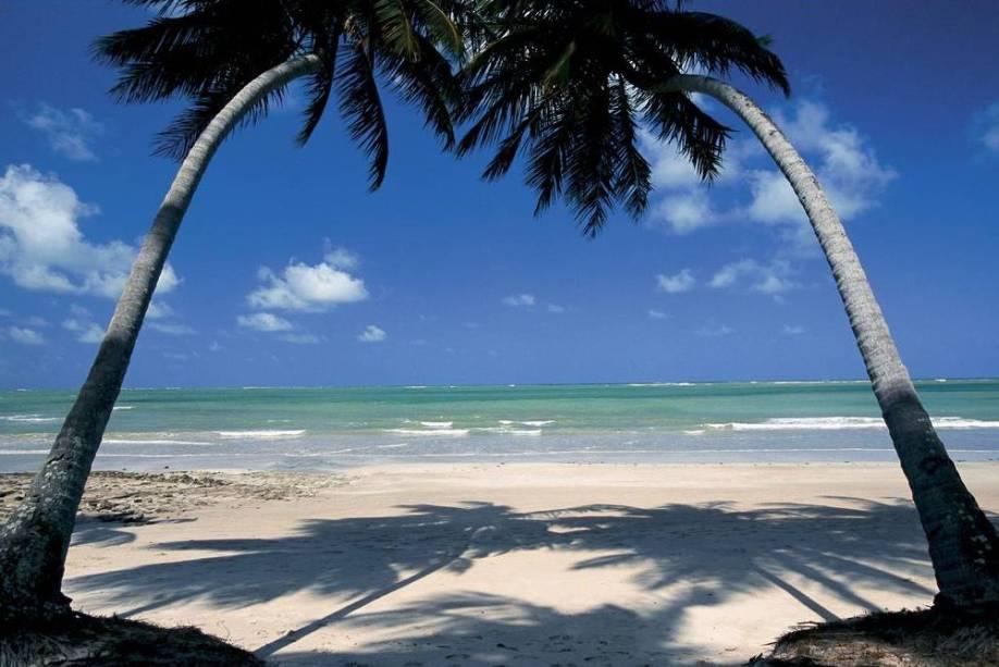 "A <strong>Praia dos Carneiros</strong>, em <strong>Tamandaré</strong>, <strong>Pernambuco</strong>, reúne todos os atributos de uma bela praia: coqueirais, areia clara e mar verde-transparente.<a href=""https://www.booking.com/searchresults.pt-br.html?aid=332455&lang=pt-br&sid=eedbe6de09e709d664615ac6f1b39a5d&sb=1&src=index&src_elem=sb&error_url=https%3A%2F%2Fwww.booking.com%2Findex.pt-br.html%3Faid%3D332455%3Bsid%3Deedbe6de09e709d664615ac6f1b39a5d%3Bsb_price_type%3Dtotal%26%3B&ss=Praia+dos+Carneiros%2C+Tamandar%C3%A9%2C+Pernambuco%2C+Brasil&checkin_monthday=&checkin_month=&checkin_year=&checkout_monthday=&checkout_month=&checkout_year=&no_rooms=1&group_adults=2&group_children=0&from_sf=1&ss_raw=Praia+dos+Carneiros&ac_position=0&ac_langcode=xb&dest_id=257832&dest_type=landmark&search_pageview_id=4c6c8605a274010f&search_selected=true&search_pageview_id=4c6c8605a274010f&ac_suggestion_list_length=5&ac_suggestion_theme_list_length=0&map=1"" target=""_blank"" rel=""noopener""><i><span>Busque hospedagens na Praia dos Carneiros.</span></i></a>"