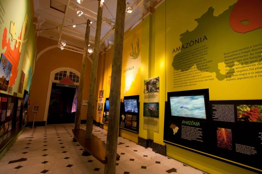 Com vídeos, textos e cores, um dos salões do Catavento Cultural mostra um pouco de cada um dos biomas brasileiros