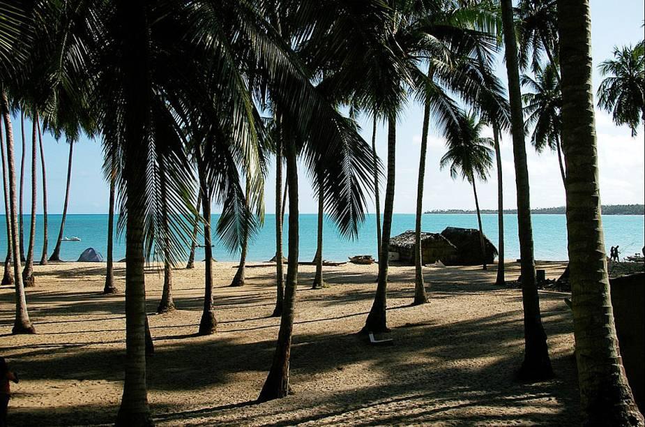 A Praia Bitingui, em Maragogi, é bem calma e reservada e ainda conta com coqueiros e um mar azul claro