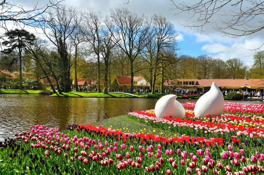 Além das tulipas, são exibidas 7 milhões de flores de várias espécies diferentes