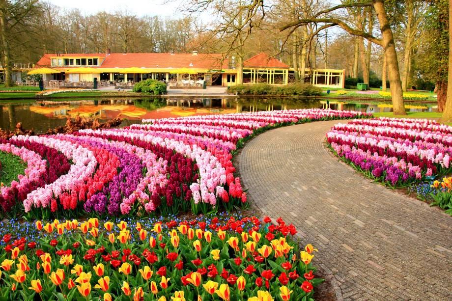 Prepare a câmera para encontrar as mais variadas tonalidades de campos floridos