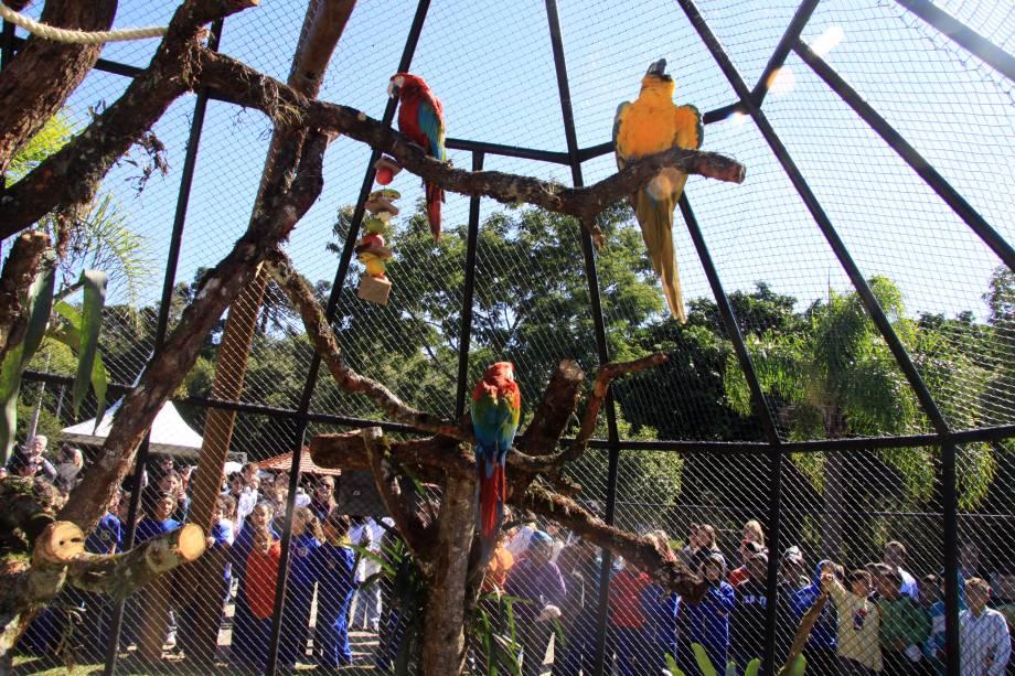 """<a href=""""http://viajeaqui.abril.com.br/estabelecimentos/br-pr-curitiba-atracao-zoologico-parque-regional-do-iguacu"""" rel=""""Zoológico (Parque Regional do Iguaçu):""""><strong>Zoológico (Parque Regional do Iguaçu):</strong></a> abriga mais de três mil animais de cerca de 80 espécies – algumas em risco de extinção, como o lobo-guará e a harpia, uma rara ave de rapina. Rua João Miqueletto (Alto Boqueirão). De terça a domingo, das 09h às 17h"""