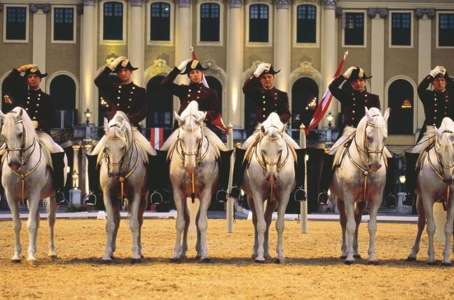 Apresentação da Escola Espanhola de Cavalaria no Palácio Schönbrunn