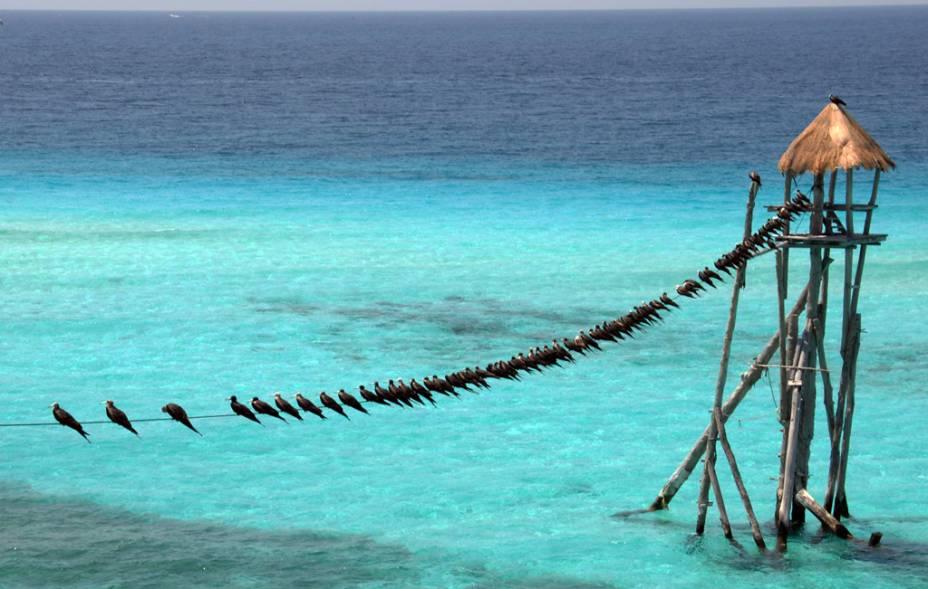<strong>4. Isla Mujeres</strong>Atividades náuticas e praias de beleza caribenha. A exemplo de Cozumel, a ilha também conta com infraestrutura turística completa: hotéis de diferentes categorias, bares, restaurantes e vida noturna
