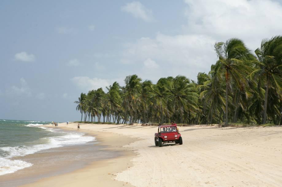 Uma das preferidas dos maceioenses, a Praia do Gunga lembra uma península, com mar de um lado e a Lagos do Roteiro do outro. No meio, muitos coqueiros