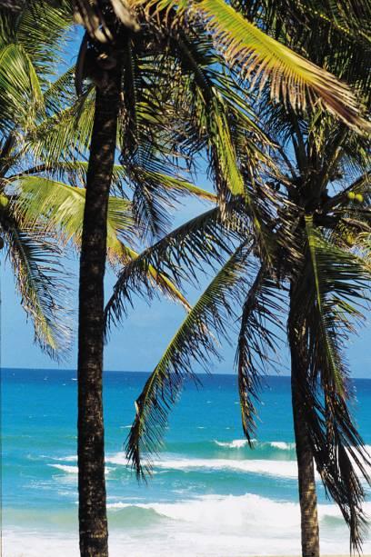 A apenas 33 Km de Maceió, a Praia do Francês é quase uma extensão da capital alagoana