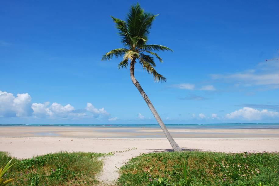 """Uma das características do litoral alagoano são as praias rasas, que """"secam"""" na maré baixa. <a href=""""http://viajeaqui.abril.com.br/estabelecimentos/br-al-sao-miguel-dos-milagres-atracao-praia-porto-da-rua"""">Porto da Rua</a>, praia de <a href=""""http://viajeaqui.abril.com.br/cidades/br-al-sao-miguel-dos-milagres"""" target=""""_blank"""">São Miguel dos Milagres</a>, é assim. É possível acompanhar a maré subindo e aquele mar de cor verde-água tomando conta do horizonte, aos poucos, enquanto o dia acontece"""