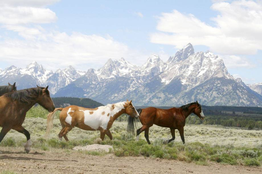 O resort de Jackson Hole, que fica perto do parque de Yellowstone, tem um legítimo clima country