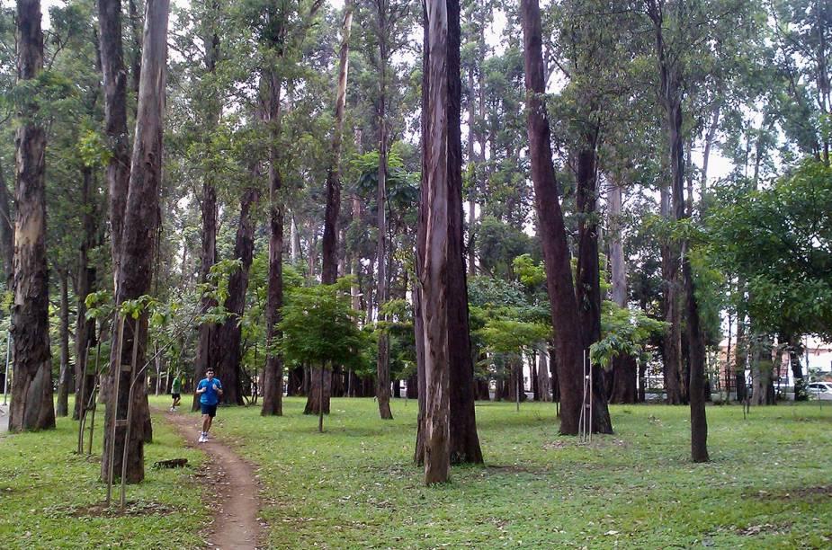 """No mês em que comemora 60 anos, o <a href=""""http://viajeaqui.abril.com.br/estabelecimentos/br-sp-sao-paulo-atracao-parque-do-ibirapuera"""" rel=""""Parque do Ibirapuera"""" target=""""_blank"""">Parque do Ibirapuera</a> preparou uma programação especial e gratuita. A agenda conta com atrações que são desde apresentações e palestras até observação de aves e visitas guiadas"""
