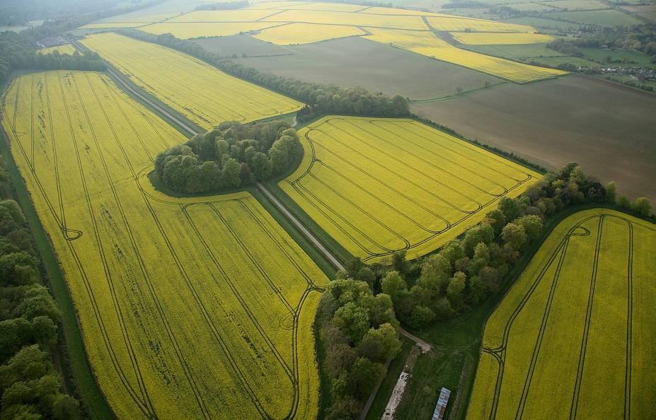 De cima de um balão, a vista que se tem dos campos agrícolas de Cotswolds é esta