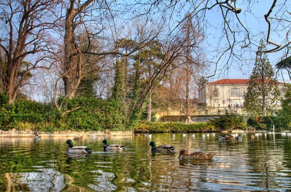 """Patos nadam tranquilamente nas águas doparc de la Maison Blanche, em <a href=""""http://viajeaqui.abril.com.br/cidades/franca-marselha/"""" rel=""""Marselha"""">Marselha</a>, <a href=""""http://viajeaqui.abril.com.br/paises/franca"""" rel=""""França"""" target=""""_self"""">França</a>"""