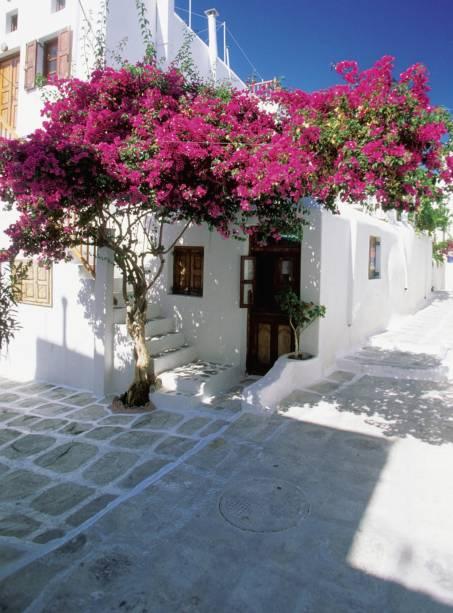 As famosas casinhas caiadas de branco, praticamente debruçadas no mar e enfileiradas em vielas estreitas, compõem a bela paisagem de Santorini