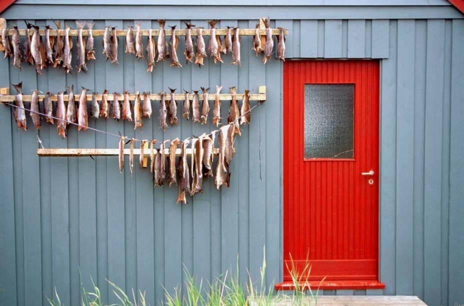 Por muitos anos, a Noruega foi altamente dependente de sua indústria pesqueira, fortemente simbolizada pela presença de arenques e bacalhaus presentes em mesas de todo o mundo. Hoje, boa parte do estado de bem estar social é movido pelo petróleo de seus poços em alto mar