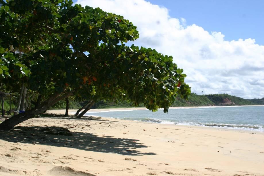 <strong>Praia do Satu</strong><br />A beleza da Praia do Satu compensa o difícil acesso ao local. Para chegar à praia é preciso cruzar o Rio Caraíva de barco e caminhar pela orla por cerca de uma hora