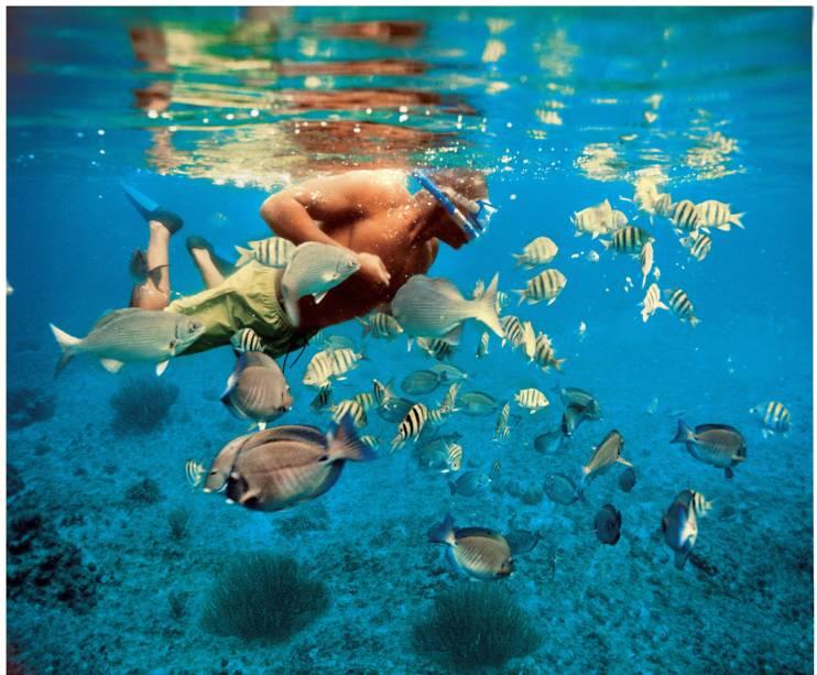 <strong>2. Cozumel</strong>Águas mornas e translúcidas permitem visibilidade de 30 metros ou mais em dias de verão. A riqueza natural da ilha, que vive bombada de turistas, foi apresentada ao mundo pelo pesquisador francês Jacques Cousteau